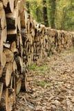 Δρόμος ξύλων Στοκ εικόνα με δικαίωμα ελεύθερης χρήσης