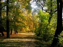 δρόμος πάρκων Στοκ φωτογραφία με δικαίωμα ελεύθερης χρήσης