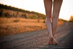 δρόμος ποδιών αγροτικός στοκ εικόνα