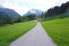 Δρόμος που οδηγεί στη δασώδη περιοχή στοκ εικόνα