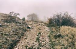 Δρόμος που οδηγεί στο τρομακτικό και misty υψίπεδο στοκ εικόνες με δικαίωμα ελεύθερης χρήσης