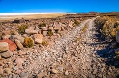 Δρόμος προς Salar de Uyuni Στοκ Εικόνα