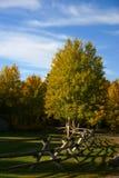 δρόμος ραγών φραγών φθινοπώρου Στοκ Εικόνες