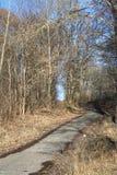 Δρόμος σε ένα πάρκο μεταξύ των δέντρων Στοκ φωτογραφίες με δικαίωμα ελεύθερης χρήσης