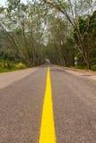 Δρόμος σηράγγων δέντρων Στοκ φωτογραφία με δικαίωμα ελεύθερης χρήσης
