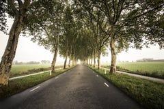 Δρόμος 3 σηράγγων Στοκ φωτογραφία με δικαίωμα ελεύθερης χρήσης