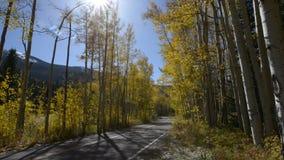 Δρόμος στα χρώματα πτώσης της Aspen Κολοράντο απόθεμα βίντεο