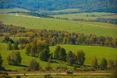 Δρόμος στα Altay βουνά στοκ φωτογραφίες