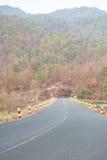 Δρόμος στα moutains στοκ φωτογραφίες