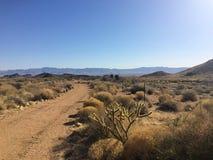 Δρόμος στην έρημο της Αριζόνα κάτω από το μπλε ουρανό Στοκ φωτογραφίες με δικαίωμα ελεύθερης χρήσης