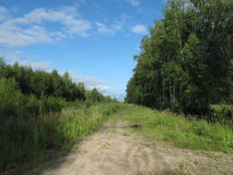 Δρόμος στην επαρχία σε μια θερινή ημέρα Στοκ Εικόνες
