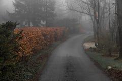 Δρόμος στην ελαφριά ομίχλη Στοκ φωτογραφίες με δικαίωμα ελεύθερης χρήσης