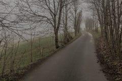 Δρόμος στην ελαφριά ομίχλη Στοκ Φωτογραφίες