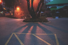 Δρόμος στην ομίχλη Στοκ Εικόνα