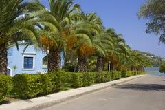 Δρόμος στην παραλία Govino σε Gouvia, Κέρκυρα, Ελλάδα Στοκ Φωτογραφίες