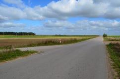 Δρόμος στην πεδιάδα Στοκ Εικόνα