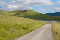 Δρόμος στη λίμνη Vrazje στο εθνικό πάρκο Durmitor στο Μαυροβούνιο Στοκ εικόνα με δικαίωμα ελεύθερης χρήσης