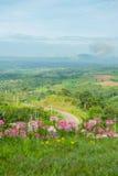 Δρόμος στη περίοδο βροχών βουνών στο khao-Kho Phetchabun, Ταϊλάνδη Στοκ Εικόνα