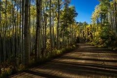 Δρόμος στη Aspen το φθινόπωρο με το μπλε ουρανό Στοκ εικόνες με δικαίωμα ελεύθερης χρήσης
