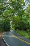 Δρόμος στη Hana Maui Χαβάη Στοκ εικόνα με δικαίωμα ελεύθερης χρήσης
