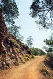 Δρόμος στον κόλπο Sazak Πεύκο-δέντρα και βράχοι agedness στοκ φωτογραφίες με δικαίωμα ελεύθερης χρήσης