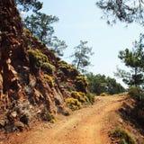 Δρόμος στον κόλπο Sazak Πεύκο-δέντρα και βράχοι agedness στοκ εικόνες