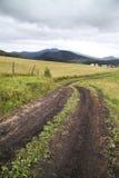 Δρόμος στον τομέα και το χωριό στοκ φωτογραφία