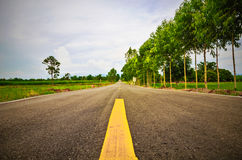 Δρόμος στο δάσος της Ταϊλάνδης Στοκ φωτογραφία με δικαίωμα ελεύθερης χρήσης