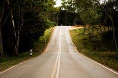 Δρόμος στο δασικό υπόβαθρο Στοκ φωτογραφίες με δικαίωμα ελεύθερης χρήσης