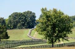 Δρόμος στο εθνικό πάρκο δικαστηρίων Appomattox Στοκ Εικόνες
