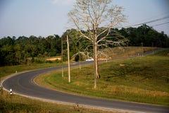 Δρόμος στο εθνικό πάρκο Khao Yai Στοκ εικόνες με δικαίωμα ελεύθερης χρήσης