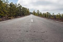 Δρόμος στο εθνικό πάρκο Teide πεζοπορία tenerife Στοκ Εικόνες
