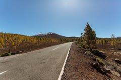 Δρόμος στο ηφαίστειο EL Teide στο εθνικό πάρκο Teide Στοκ φωτογραφία με δικαίωμα ελεύθερης χρήσης