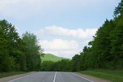 Δρόμος στο θερινό δάσος στοκ εικόνες με δικαίωμα ελεύθερης χρήσης