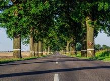Δρόμος στο καλοκαίρι Στοκ φωτογραφίες με δικαίωμα ελεύθερης χρήσης