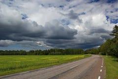 Δρόμος στο νησί Saaremaa, Εσθονία Στοκ εικόνα με δικαίωμα ελεύθερης χρήσης