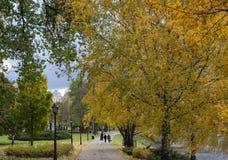 Δρόμος στο πάρκο πόλεων το φθινόπωρο Χρυσό φθινόπωρο Στοκ εικόνες με δικαίωμα ελεύθερης χρήσης