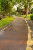 Δρόμος στο πάρκο. Στοκ Φωτογραφίες