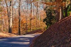Δρόμος στο πάρκο Lullwater, Ατλάντα, ΗΠΑ Στοκ Εικόνα