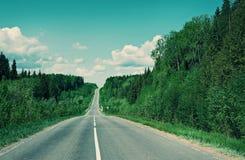 Δρόμος στο ρωσικό δάσος Στοκ εικόνα με δικαίωμα ελεύθερης χρήσης