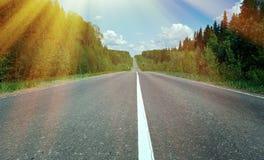 Δρόμος στο ρωσικό δάσος Στοκ Εικόνες