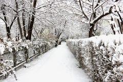 Δρόμος στο χιονισμένο πάρκο στοκ εικόνες με δικαίωμα ελεύθερης χρήσης