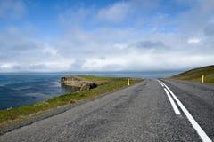 δρόμος της Ισλανδίας φυ&sigma Στοκ Εικόνα