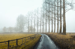 Δρόμος 2 της Misty Στοκ Εικόνα