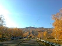 Δρόμος το φθινόπωρο στοκ εικόνες με δικαίωμα ελεύθερης χρήσης
