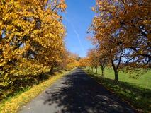 Δρόμος το φθινόπωρο Στοκ εικόνα με δικαίωμα ελεύθερης χρήσης