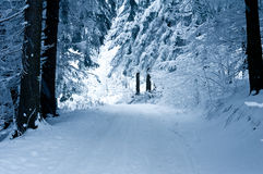 Δρόμος το χειμώνα Στοκ εικόνα με δικαίωμα ελεύθερης χρήσης