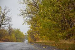 Δρόμος φθινοπώρου που φεύγει στην απόσταση Στοκ Φωτογραφία
