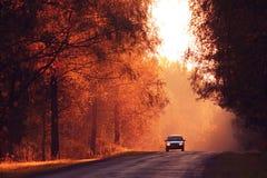 Δρόμος φθινοπώρου στο ηλιοβασίλεμα Στοκ εικόνα με δικαίωμα ελεύθερης χρήσης