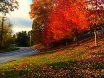 Δρόμος φθινοπώρου χώρας Στοκ Φωτογραφία